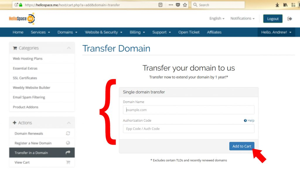 Transferring Domain to Us